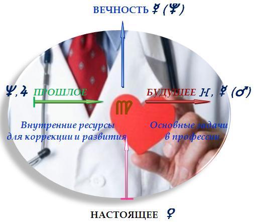 Профессия  врача, целителя, ветеринара, фельдшера, медсестры