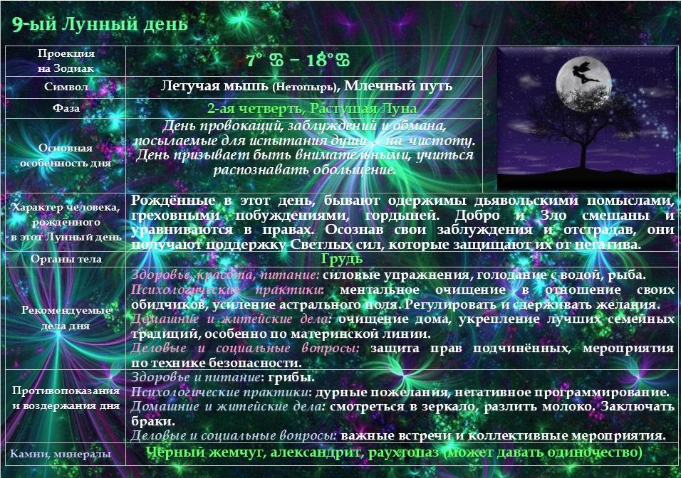 9-ый Лунный год