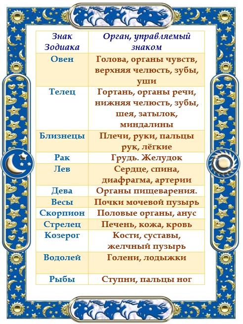Органы знаков Зодиака