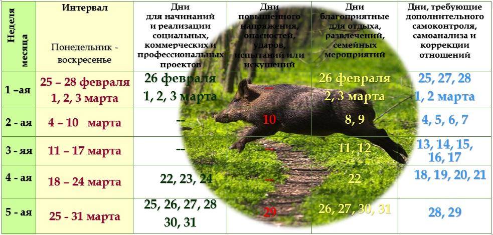 Астрологический прогноз на март 2019 года