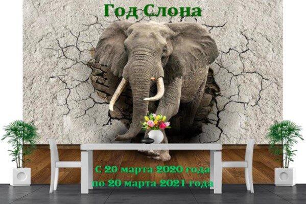 Год Слона по календарю Древних ариев