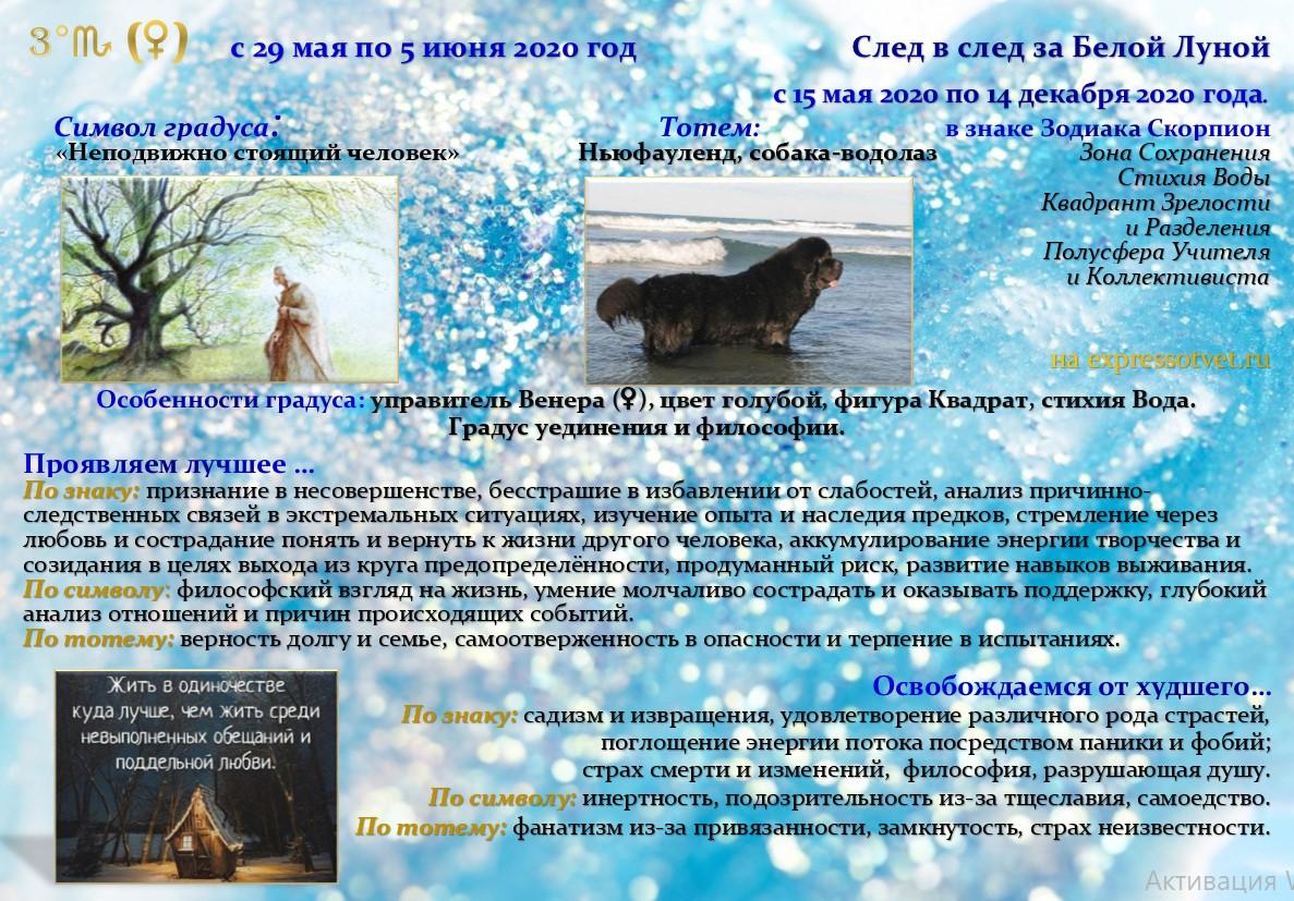http://expressotvet.ru/wp-content/uploads/2020/05/Arta-3-Skorpiona.jpg
